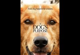 A DOGS PURPOSE MOVIE – IS REINCARNATION REAL?
