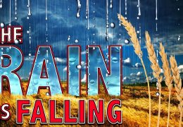 THE RAIN IS FALLING – THE HOLY SPIRIT